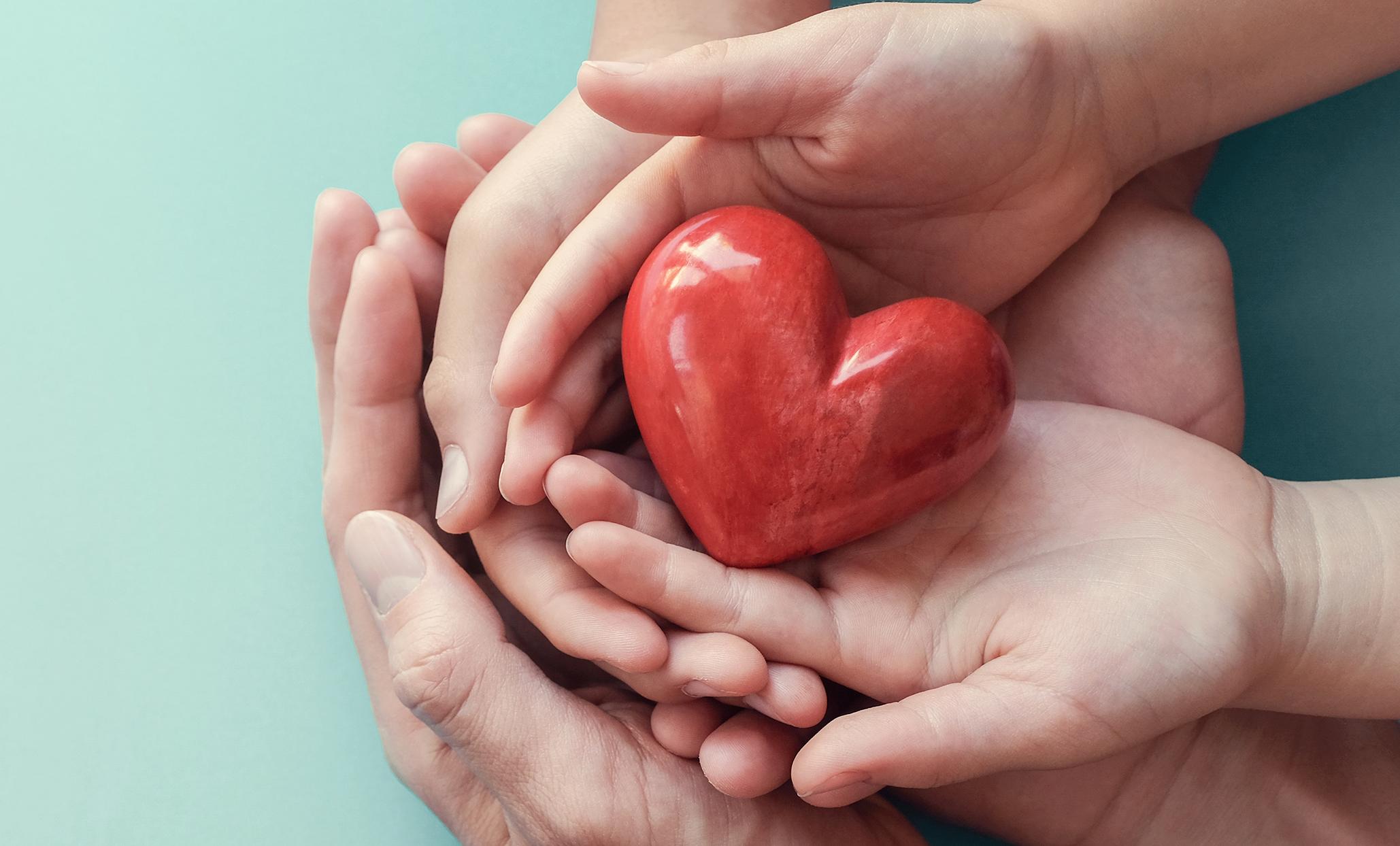 hart shape in peoples hands
